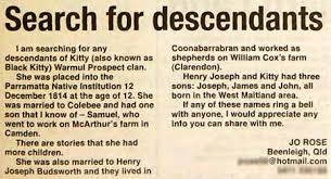 stolen generations effects and consequences creative spirits newspaper cut out showing a personal ad of jo rose looking for family members