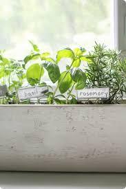 beautiful kitchen herb garden