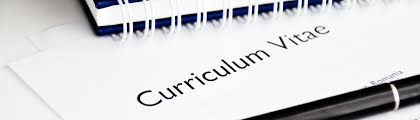 Professional Pilot Curriculum Vitae Cv Resume Tailored For You