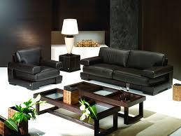 Amazing Ideas Black Couch Living Room Ideas Enjoyable Living Room Black Sofa