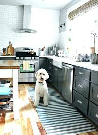 grey kitchen rugs. Gray Kitchen Rugs Appealing Sink Plus Rug Impressive Home Design Ideas Throw Grey V