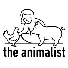 What Is Animalism The Animalist Medium
