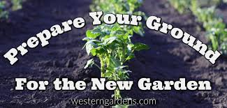 prepare your soil for your vegetable garden