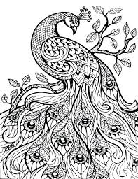 Free Printable Detailed Coloring Pages Auchmar