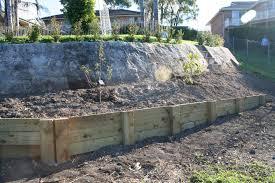garden edging ideas borders trends