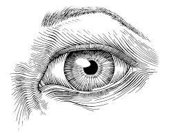 best 25 ink pen drawings ideas