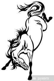 Fototapeta Vinylová Vzpírá Kůň Tetování