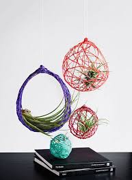 coloful yarn spheres with air plants inside