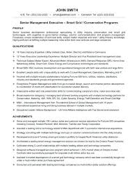 Best Executive Resume Format Sample Technology Manager Resume Best