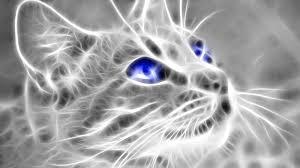 Wallpaper 3d Cat Images