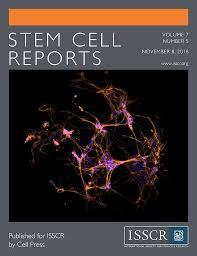 Report Cover Page Unique Image Result For Stem Cell Report Cover Page