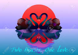 two graceful swans in love two hearts one love stock vector 12422297