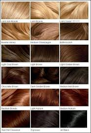 Blonde To Red Hair Color Chart Red Hair Color Charts Unique
