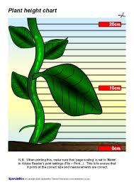 Sparklebox Height Chart Childrens Height Chart Plant Sb1701 Sparklebox