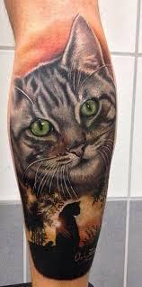 Kočičí Tetování Aneb Hrdost Kočkomilova Blog Idnescz