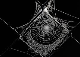 web drawing how to make a spider web drawing in illustrator