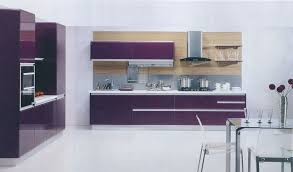 Purple Kitchen Kitchen Cabinets Purple Quicuacom
