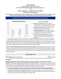 Executive Resume CEO Chief Executive Officer Resume Sample 16