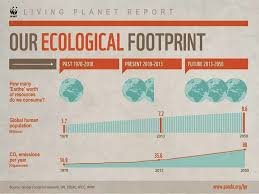 infographic our ecological footprint footprints and infographic infographic our ecological footprint