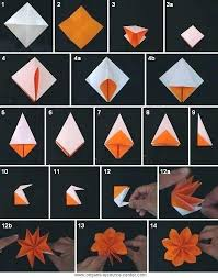 Paper Folded Flower Videos Of Origami Topstudent Co