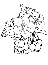 Small Coloring Pages Of Flowers Small Flower Coloring Pages Little