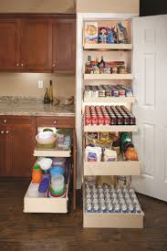 Roll Out Pantry Cabinet 17 Best Images About Pantry Pull Out Shelves On Pinterest Lazy