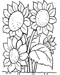 Small Picture printable coloring pages of flowers coloring ws flower pictures
