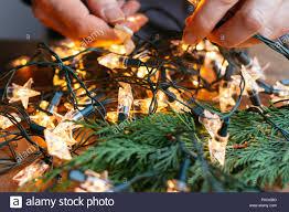 Untangle Christmas Tree Lights Man Trying To Untangle Christmas Lights Stock Photo