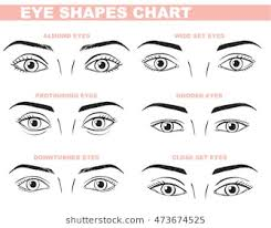 eye shape chart eye shape images stock photos vectors shutterstock