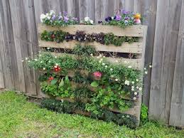backyard with wooden fences and pallet gardening