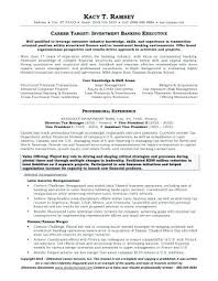 Investment Banking Analyst Resume Mesmerizing Investment Banking Cv Template