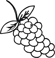 Small Picture Download Coloring Pages Grapes Coloring Page Grapes Coloring
