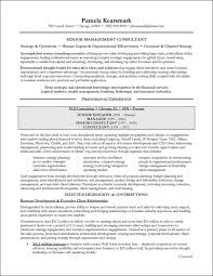 Independent It Consultant Resume Examples Accounting Sample