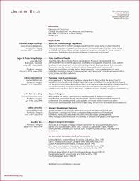 Assistant Designer Resume Sample Resume For Information Technology Assistant New Designer