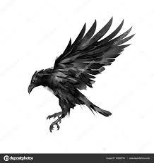 ворон эскизы рисование эскиза полет ворон черный на белом фоне