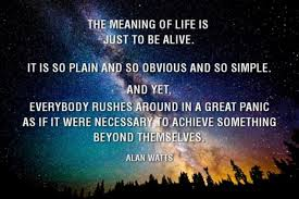 Meaning Of Quote Awesome The Meaning Of Life Is Jut To Be Alive Alan Watts Quote 48buz