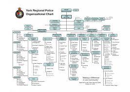 Microsoft Office Org Chart Tool 022 Microsoft Organization Chart Templates Template Ideas