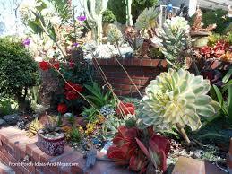 Small Picture Succulent Garden Designs Pictures Of Succulents Front Porch Ideas
