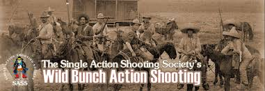 Image result for 45 acp wild bunch