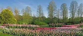 flowers for garden. Flower Garden Walk Flowers For