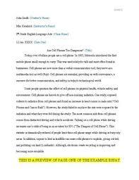 Argumentative Essay Instructions Example