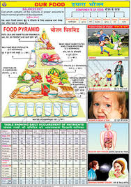 Food And Its Nutrients Chart Our Food For Food And Nutrition Chart