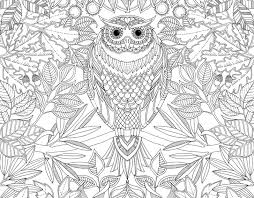 728x567 coloring book unleash your inner child with johanna basfords