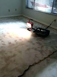 removing linoleum from wood floor how to remove linoleum from concrete how to remove linoleum from