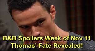 The Bold and the Beautiful Spoilers: Week of November 11 ...