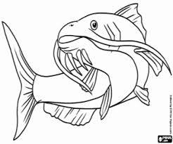 Small Picture Fishes coloring pages printable games