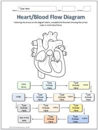 Human Blood Flow Chart Human Heart Parts And Blood Flow Labeling Worksheets For Google Slides