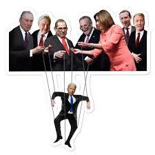 FUNNY BIDEN PUPPET Sticker Sleepy Joe Biden DNC Dementia Trump 2020 Pelosi  AOC - £5.08 | PicClick UK