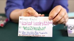 Make Index Cards Making Index Cards Magdalene Project Org