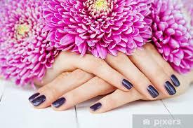 Nálepka Elegantní Manikúra S Tmavými Nehty A Růžové Květy Pixerstick